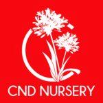 CND Nursery